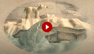 image of polar bear on iceberg